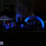 Earth Hour Bermuda, March 28 2015-51