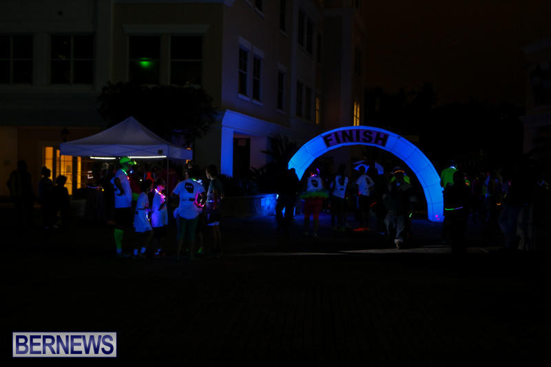 Earth-Hour-Bermuda-March-28-2015-51