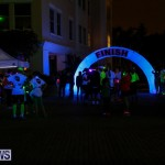 Earth Hour Bermuda, March 28 2015-55