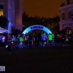 Earth Hour Bermuda, March 28 2015-57