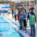 Middle School Robotics Competition Bermuda, March 8 2015-26
