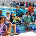 Middle School Robotics Competition Bermuda, March 8 2015-42