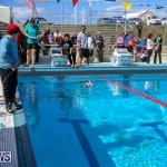 Middle School Robotics Competition Bermuda, March 8 2015-8