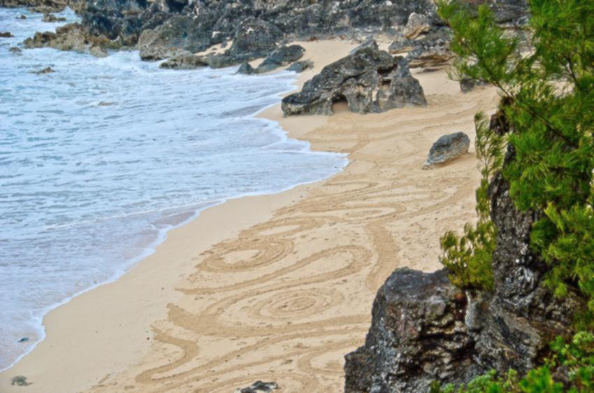 bermuda-beach-art-festival-2015-Team-Sargasso-SandArt-2936