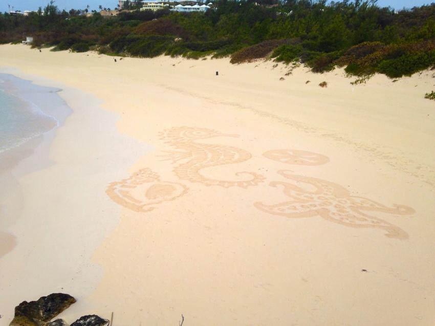 bermuda-beach-art-festival-2015-sand zen