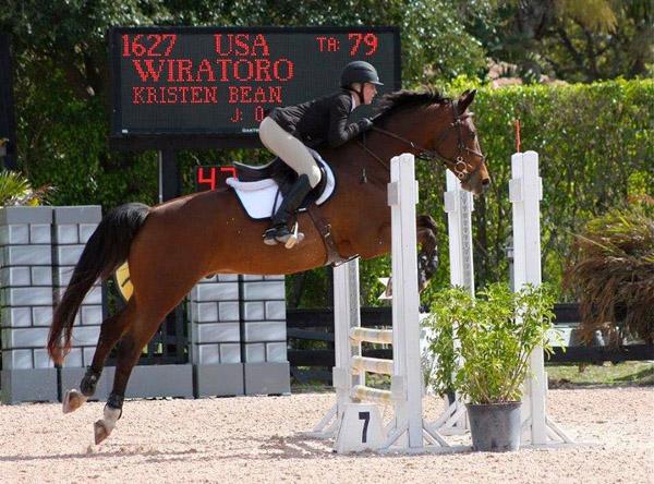 bermuda equestrian busy overseas 11q