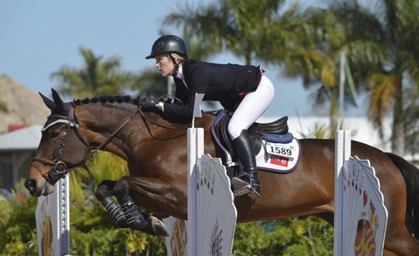 bermuda equestrian busy overseas 2wqw