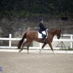 equestrian 6mar2015 (10)