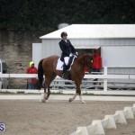 equestrian 6mar2015 (11)