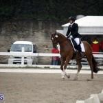 equestrian 6mar2015 (12)