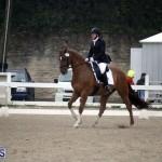 equestrian 6mar2015 (13)