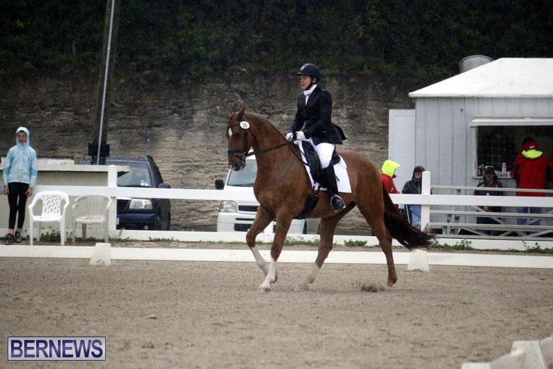 equestrian-6mar2015-13