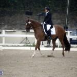 equestrian 6mar2015 (14)