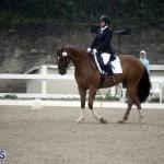 equestrian 6mar2015 (15)