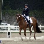 equestrian 6mar2015 (19)