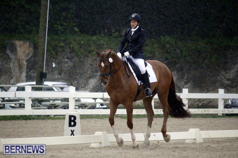 equestrian-6mar2015-19