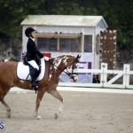 equestrian 6mar2015 (3)