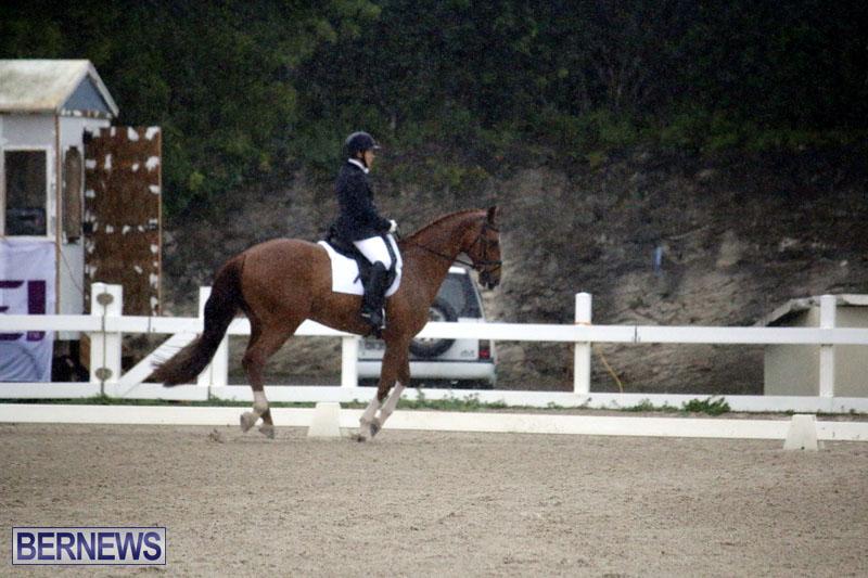 equestrian-6mar2015-9