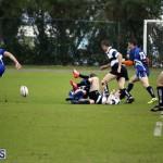 rugby 6mar2015 (8)