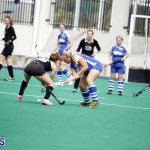 Ball Hockey 2015 April 6 (14)