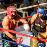 Fight Night XVII Invincible Bermuda, April 18 2015-111
