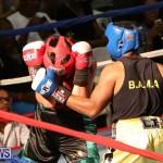Fight Night XVII Invincible Bermuda, April 18 2015-119
