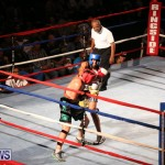 Fight Night XVII Invincible Bermuda, April 18 2015-135