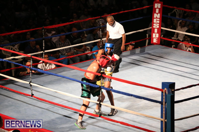 Fight-Night-XVII-Invincible-Bermuda-April-18-2015-135