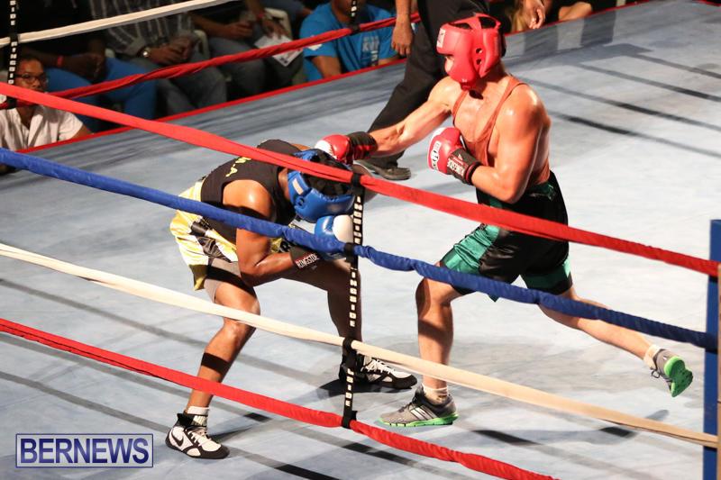 Fight-Night-XVII-Invincible-Bermuda-April-18-2015-137