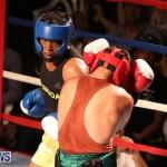 Fight Night XVII Invincible Bermuda, April 18 2015-141