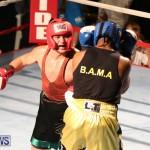 Fight Night XVII Invincible Bermuda, April 18 2015-145