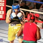 Fight Night XVII Invincible Bermuda, April 18 2015-15
