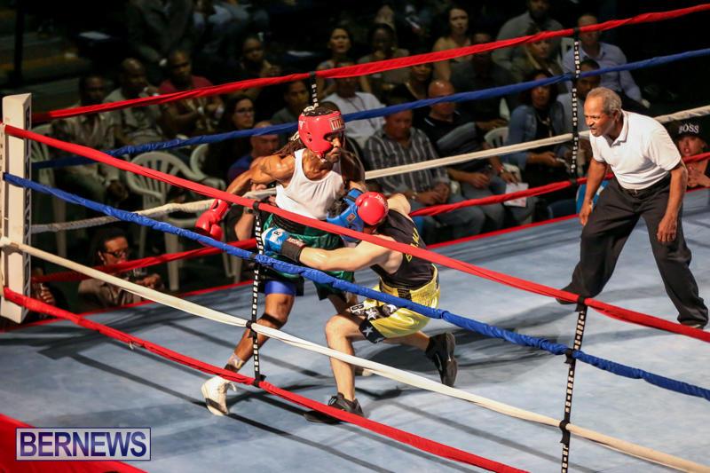 Fight-Night-XVII-Invincible-Bermuda-April-18-2015-171