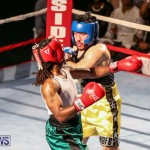 Fight Night XVII Invincible Bermuda, April 18 2015-174