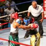 Fight Night XVII Invincible Bermuda, April 18 2015-180