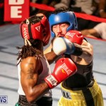Fight Night XVII Invincible Bermuda, April 18 2015-182