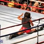 Fight Night XVII Invincible Bermuda, April 18 2015-215