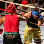 Fight Night XVII Invincible Bermuda, April 18 2015-33