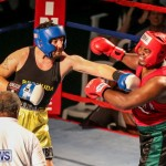 Fight Night XVII Invincible Bermuda, April 18 2015-40