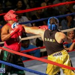 Fight Night XVII Invincible Bermuda, April 18 2015-43