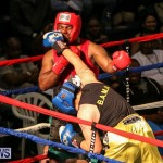 Fight Night XVII Invincible Bermuda, April 18 2015-55