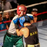 Fight Night XVII Invincible Bermuda, April 18 2015-75
