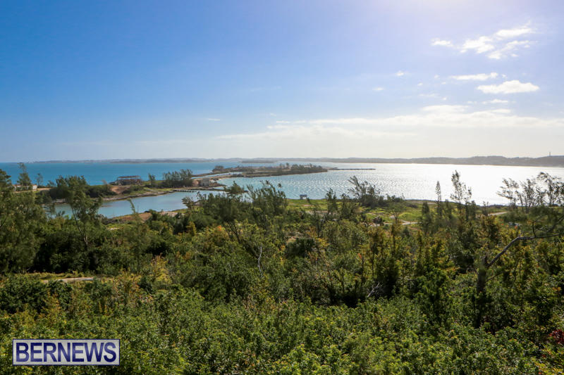 Morgans-Point-Bermuda-March-2015-5