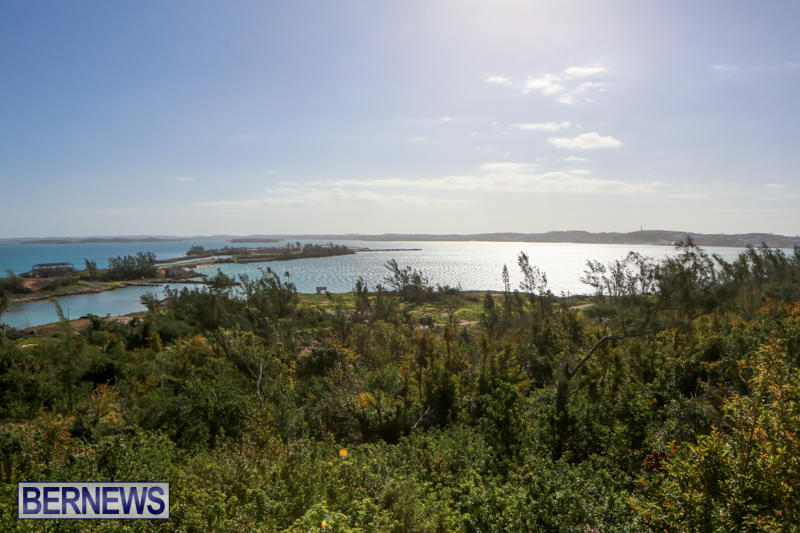 Morgans-Point-Bermuda-March-2015-6
