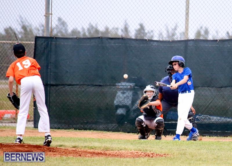 bermuda-YAO-Baseball-april-2015-1