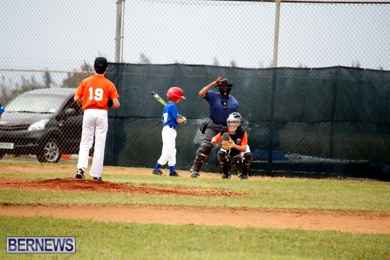 bermuda-YAO-Baseball-april-2015-10