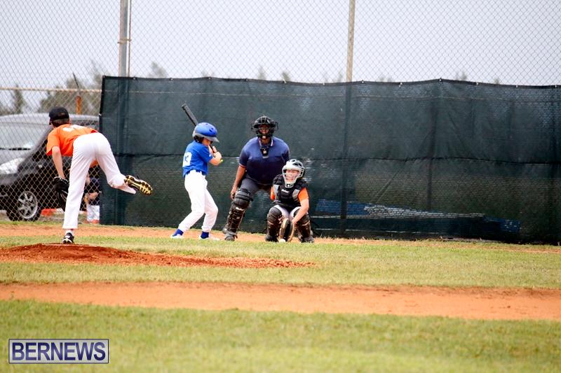 bermuda-YAO-Baseball-april-2015-11