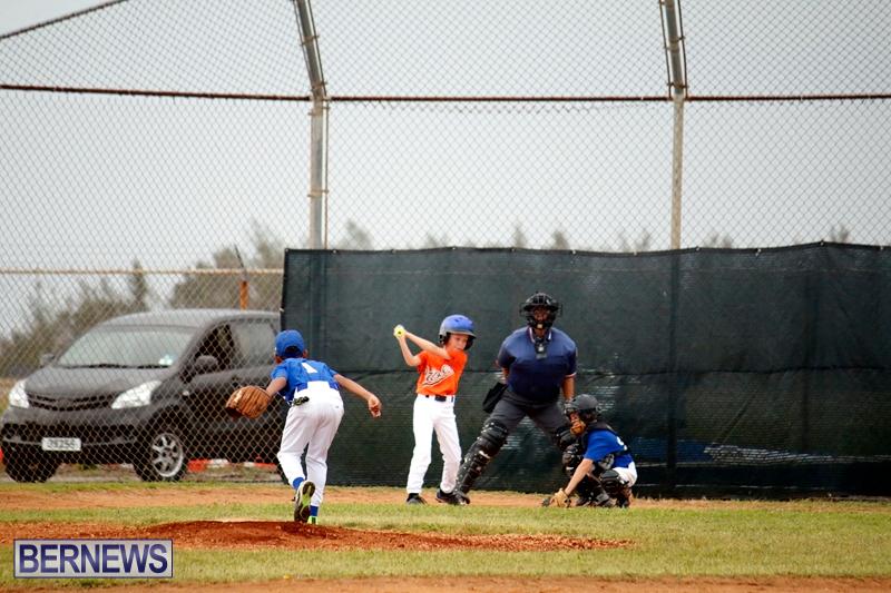 bermuda-YAO-Baseball-april-2015-12