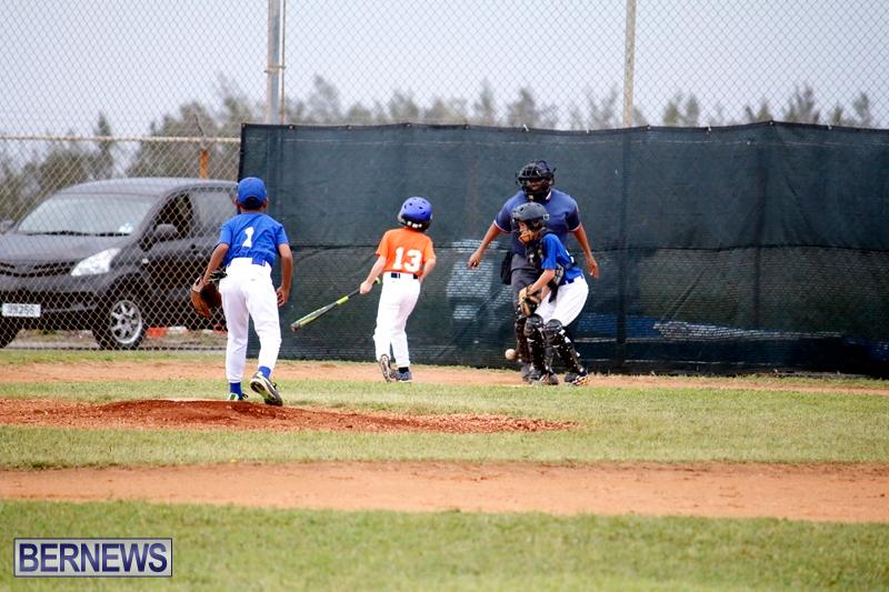 bermuda-YAO-Baseball-april-2015-15