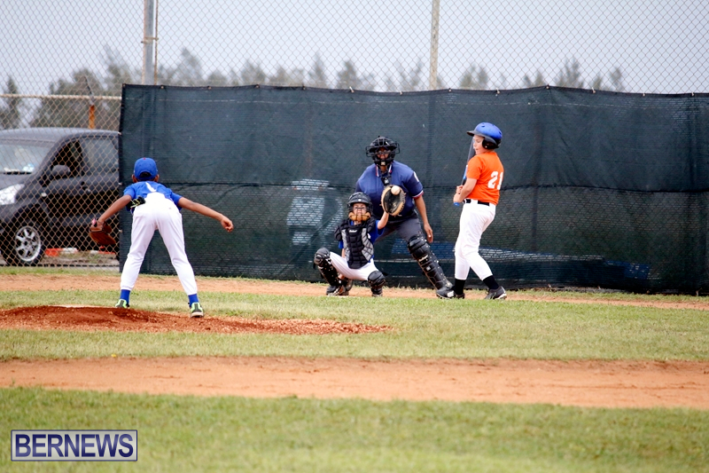 bermuda-YAO-Baseball-april-2015-18